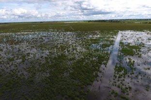 Se extiende la emergencia agropecuaria a otros cinco departamentos