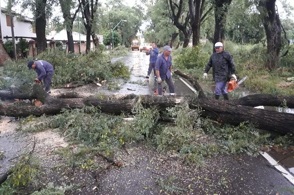 Informe de situación en Santo Tomé tras la tormenta