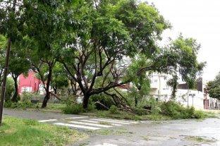 Así quedó la ciudad luego del temporal