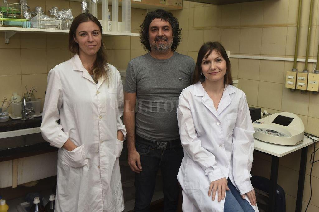 Investigadores rosarinos logran detener el avance de uno de los cánceres de hígado más letales