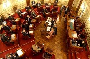 La carrera para el futuro Senado: 197 aspirantes a 19 bancas  -  -