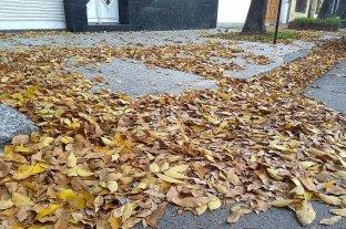 Cómo estará el clima en el primer fin de semana de otoño