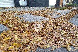 Cómo estará el clima en el primer fin de semana de otoño -  -