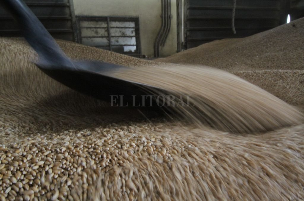 Los granos se liquidan en pesos