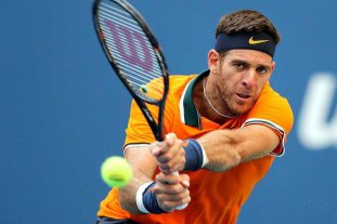 Del Potro bajó un puesto y quedó 9° en el ranking ATP