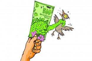 Humor: ¿Cómo detectar billetes falsos de 500?