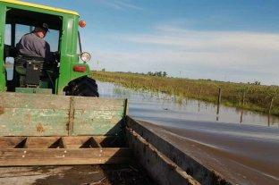 Buscan recuperar 2500 hectáreas productivas en Álvarez