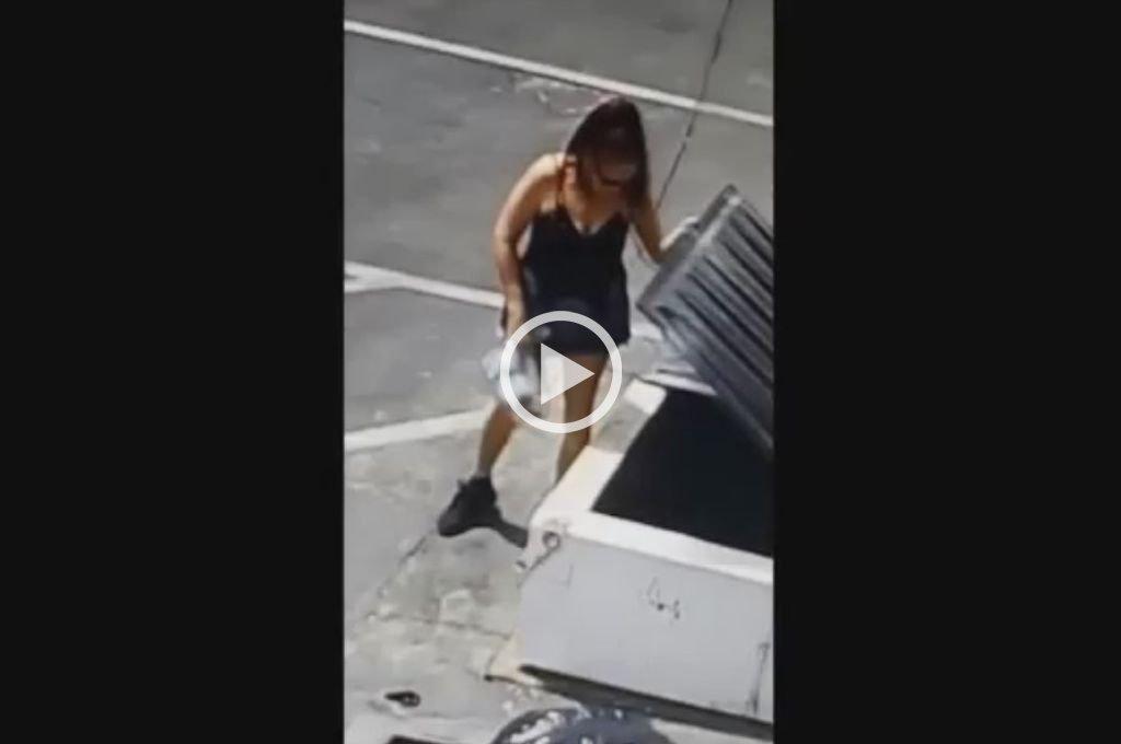 Tiró una bolsa llena de cachorros a la basura y quedó filmada