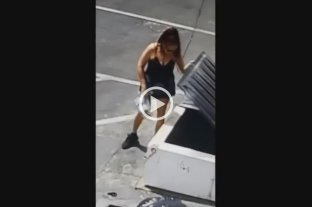 Indignante: Una mujer arrojó a la basura una bolsa con 7 cachorros