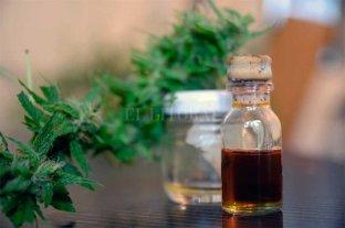 Aval al aceite de cannabis como alternativa   terapéutica para la epilepsia refractaria -  -