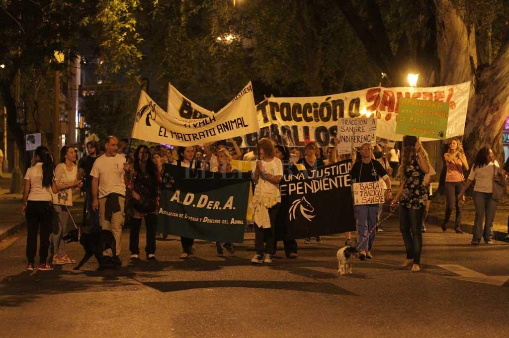 Organizaciones proteccionistas de animales marcharán por Bulevar hasta 25 de Mayo. <strong>Foto:</strong> Archivo El Litoral / Manuel Fabatía