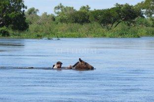 Inundaciones: donde todo sigue igual