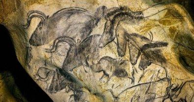"""Cine y artes visuales en el Mmav - En """"La cueva de los sueños olvidados"""" Herzog explora la Cueva de Chauvet, ubicada en Ardèche al sur de Francia, donde se hallan pinturas rupestres de hace más de 32.000 años. -"""