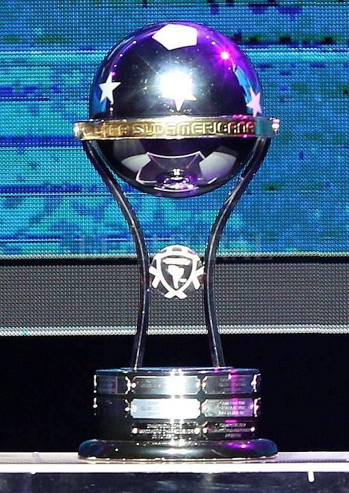 Para jugar la Libertadores y la Sudamericana los equipos deberán ser de Primera división