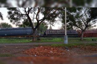 Descarrilaron tres vagones del Belgrano Cargas -