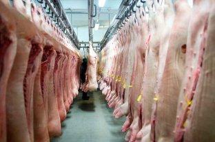 Para paliar la crisis alimentaria, Rusia enviará carne a Venezuela