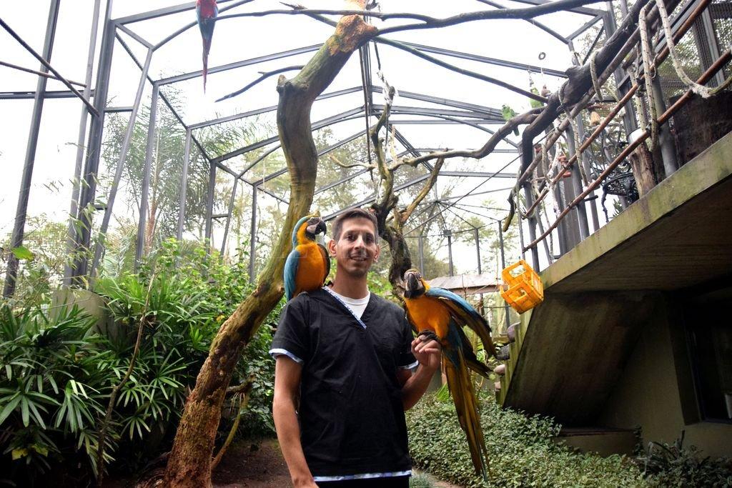 Animales exóticos: situación, cuidados y legalidades en Santa Fe y Argentina - Nicolás Scoppa, visitando a sus pacientes guacamayos en el aviario La Jacinta, administrado por Liliana Patrocelli -