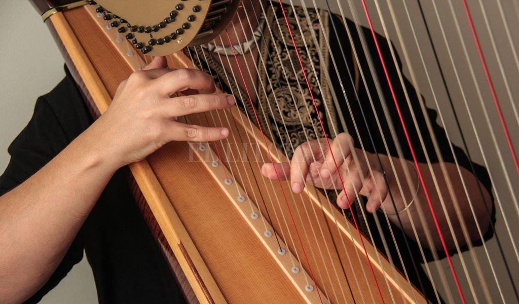 La actividad se basa en la difusión del instrumento y sus intérpretes locales.  Crédito: Gentileza Candelaria Rivero