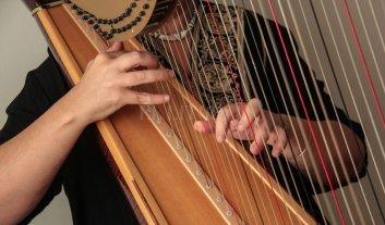 Concierto de arpas  - La actividad se basa en la difusión del instrumento y sus intérpretes locales.  -