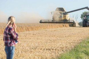 Las mujeres ocupan el 13% de los puestos profesionales en la producción agropecuaria