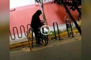 Video: así roban una bicicleta frente a la facultad de Ingeniería Química