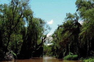 Coordinan acciones para el manejo sustentable del sitio Ramsar Jaaukanigás
