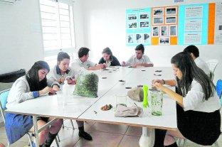 Estudiantes demostraron que se puede hacer papel sin talar un solo árbol