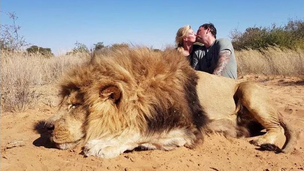 Escándalo por fotos de turistas junto a un león asesinado
