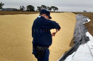 Rompieron un silo bolsa y robaron 750 kilos de soja