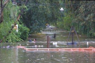 Se produjeron novedades en las causas por demandas por la inundación del Salado -  -
