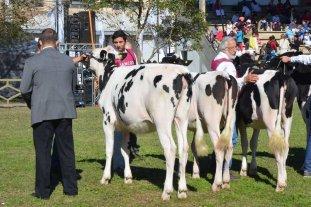 Expo Rural 2019: Rafaela calienta motores