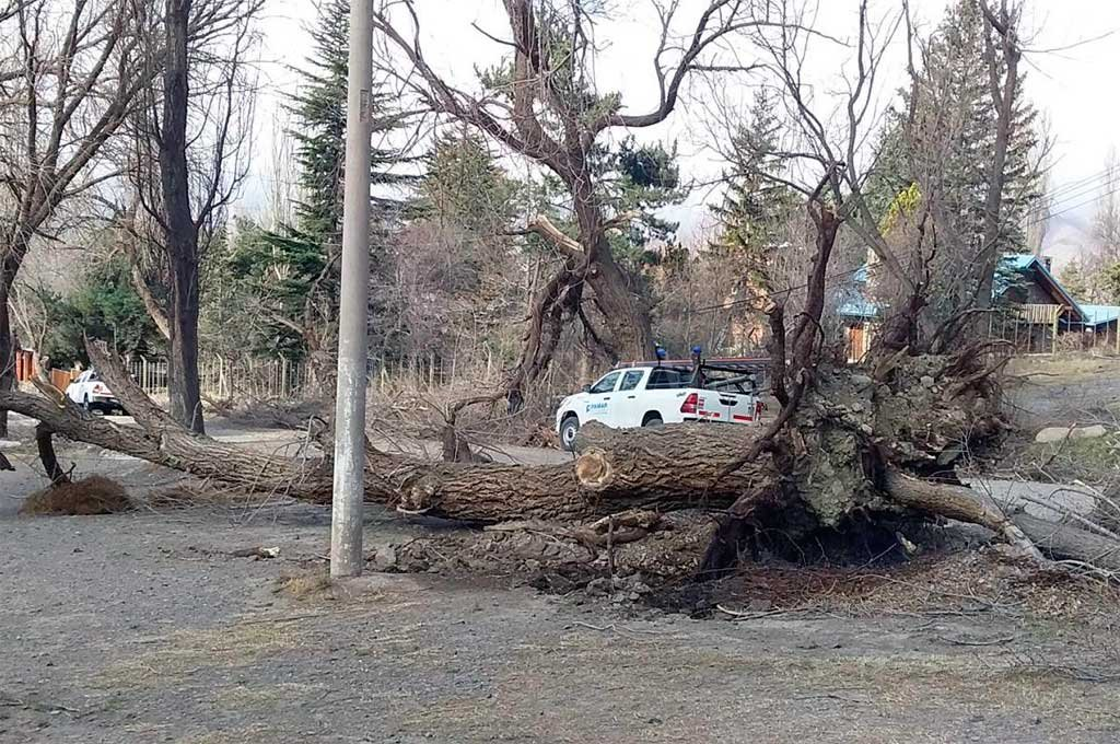 Potrerillos fue una de las zonas más afectadas <strong>Foto:</strong> MDZ Online
