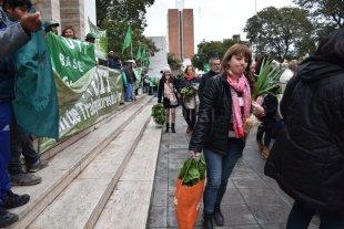 """Alimentazo: """"es un tema político, nada que ver con el sector hortícola nuestro"""""""
