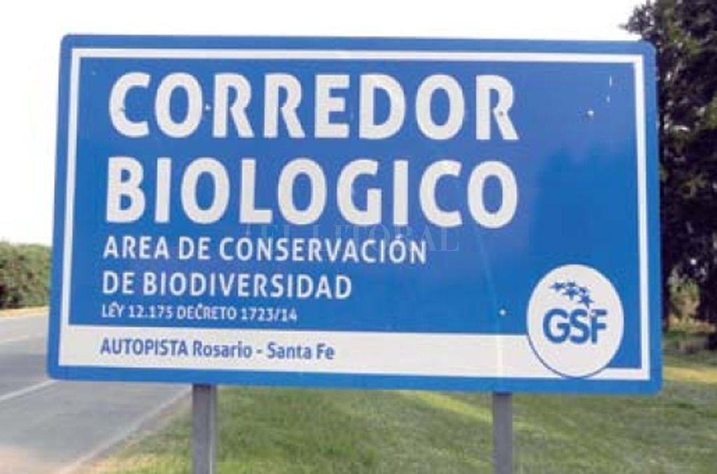 El gobierno afirma y publicita el corredor  biológico en la autopista Santa Fe y Rosario. Diputados pretende que la zona esté comprendida por ley en las áras naturales protegidas. Crédito: El Litoral