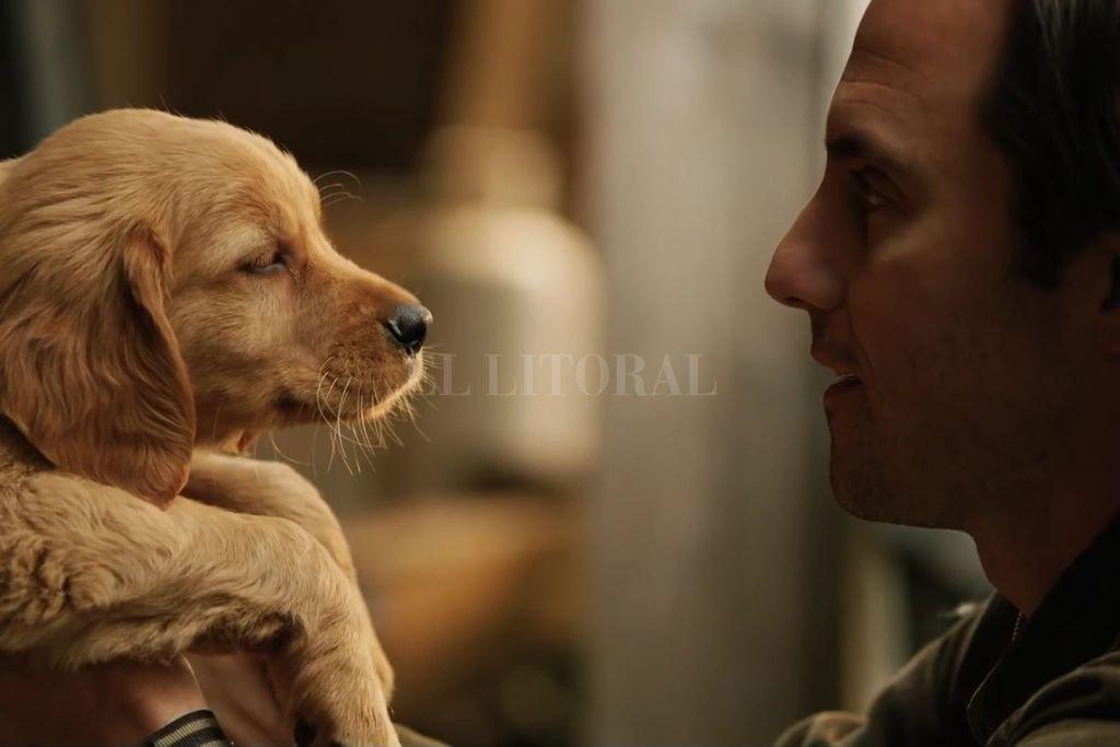 Un perro llamado Enzo (voz de Kevin Costner), cuenta las lecciones de vida que aprendió de su dueño (interpretado por Milo Ventimiglia). <strong>Foto:</strong> Gentileza Walt Disney Pictures