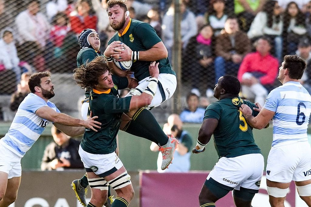 <strong>Foto:</strong> @Springboks