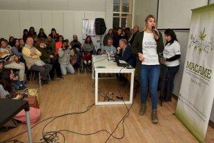 El debate por el cannabis medicinal fue eje de un encuentro en el Cemafe