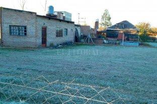 Fotos de helada en Rincón