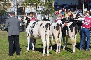 Expo Rural Rafaela 2019: conocé el programa