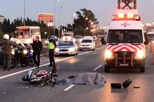 Autopista Panamericana: atropelló, mató y huyó