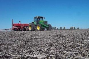 Impulso positivo del sector agroindustrial en el primer semestre