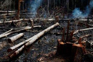 Bolsonaro acusó a los ambientalistas de intentar derrocarlo