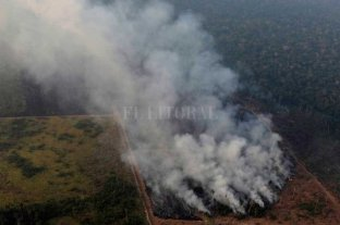 Bolsonaro acusó a los ambientalistas de intentar derrocarlo -  -