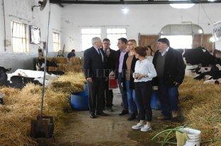 La Sociedad Rural de Rafaela abrió su tradicional muestra -  -