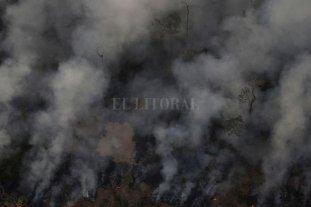 Incendios en el Amazonas: el humo llegaría a Santa Fe -  -