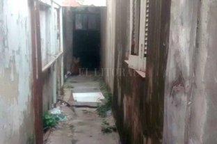 Sorpresa en Fomento 9 de Julio por la aparición de un Aguará Guazú - Luego de ser visto, el animal fue cercado por un vecino en un pasillo. Luego fue rescatado por personal de la Granja de la Esmeralda -