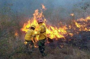 10 bomberos voluntarios santafesinos fueron convocados para combatir incendios en el Amazonas -  -
