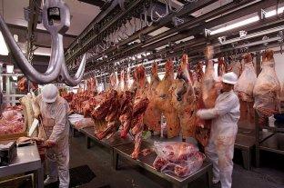 Brote rojo: frigoríficos crecen e invierten en medio de la crisis industrial