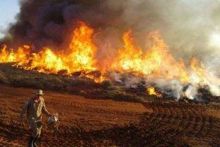 Incendios en el Amazonas: Argentina enviará ayuda a Brasil y Bolivia
