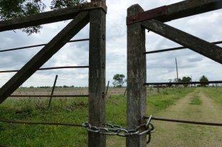 Después de las PASO, cayó la actividad inmobiliaria rural